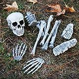 Halloween Haunters 12 Piece Bag of Plastic Skeleton Skull Bones Prop Decoration - Scary Graveyard Human Body Parts Set - Hands, Feet, Legs