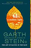 A Sudden Light: A Novel