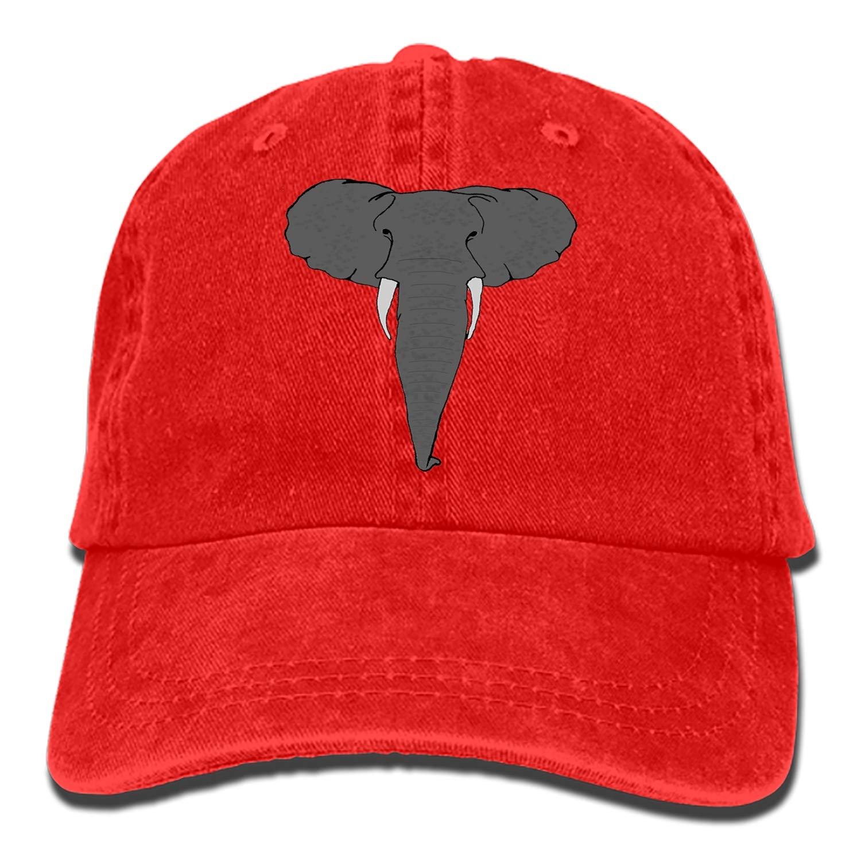 Adult Dad Cap SHUANGRENDE Unisex The African Elephant Unstructured Cotton Adjustable Hat