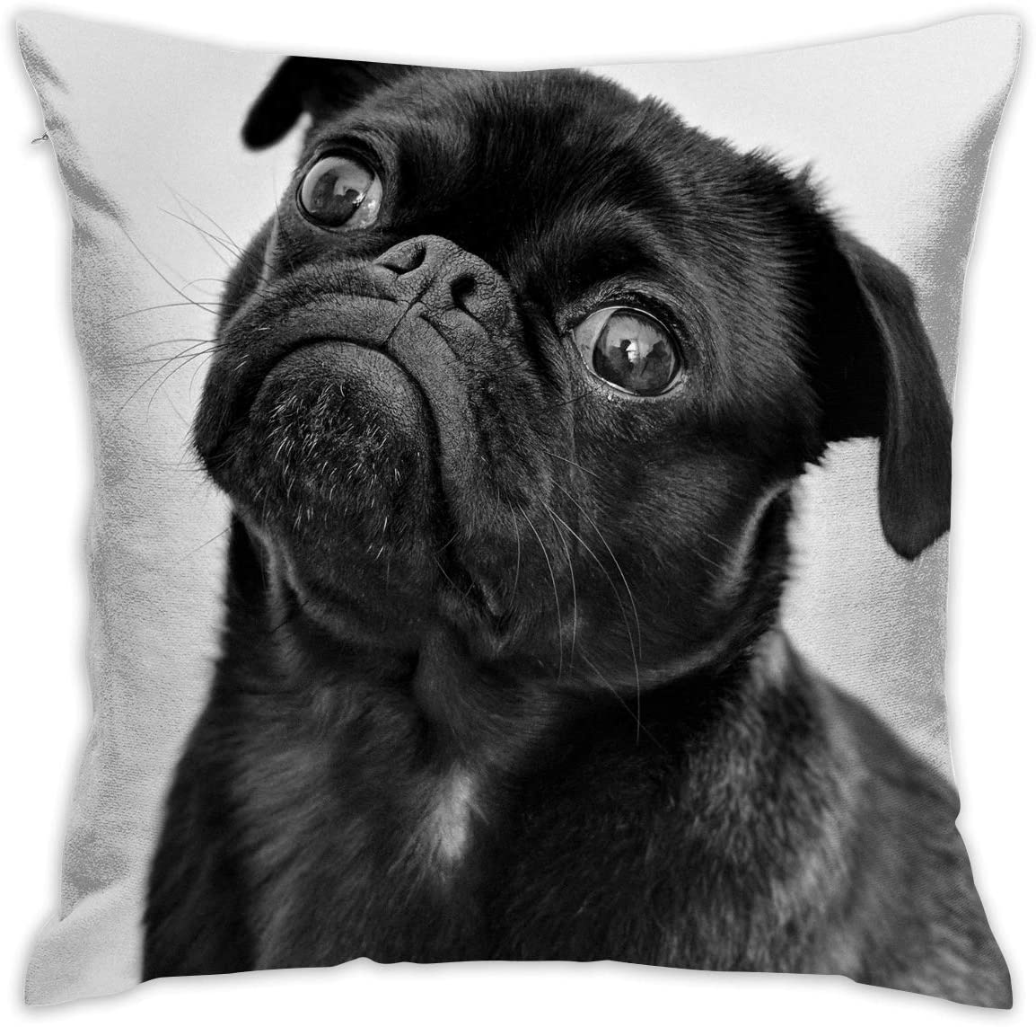 Amazon Com Cute Black Pug Dog Decorative Throw Pillow Cover Square Cushion Case For Home Sofa Bedroom Car Chair House Party Indoor Outdoor 18 X 18 Inch 45 X 45 Cm Home Kitchen