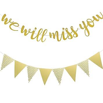 Banner de We Will Miss You Banner Dorado Brillo y Guirnalda de Borlas de Papel Banner de Despedida para Despedida de Jubilaci/ón Fiesta de Despedida de Oficina Trabajo