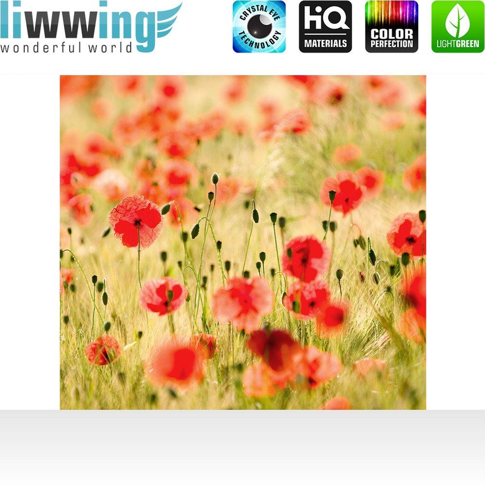 Vlies Fototapete Fototapete Fototapete 300x210 cm PREMIUM PLUS Wand Foto Tapete Wand Bild Vliestapete - DREAM OF POPPIES - Romantik Mohn Feld Blumen Gras - no. 070 c7fc8a