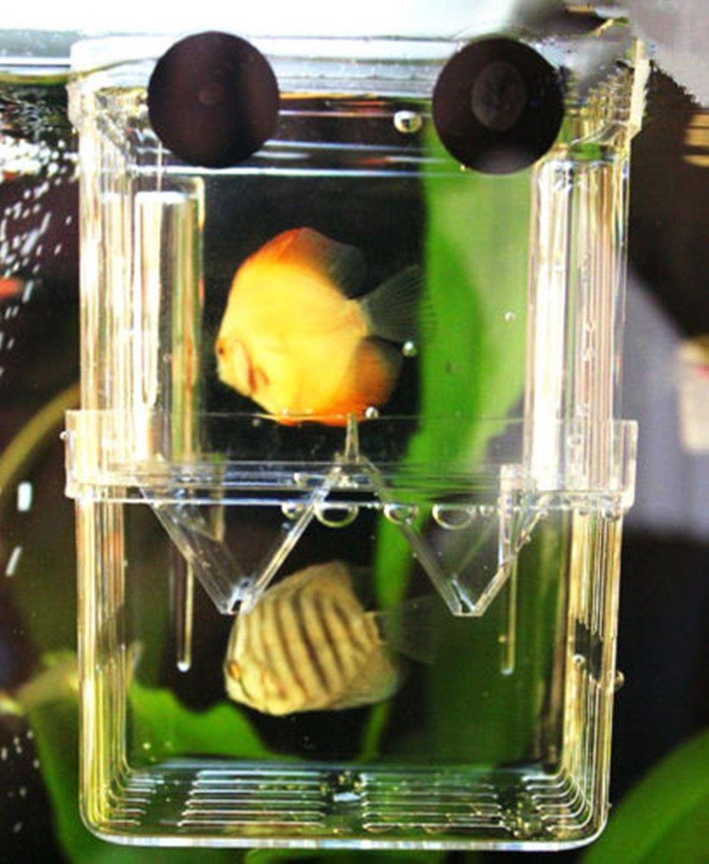 Aquarium Breeder Breeding Hatchery Tank Multi Functional Divider Spawning for Shrimp Fish