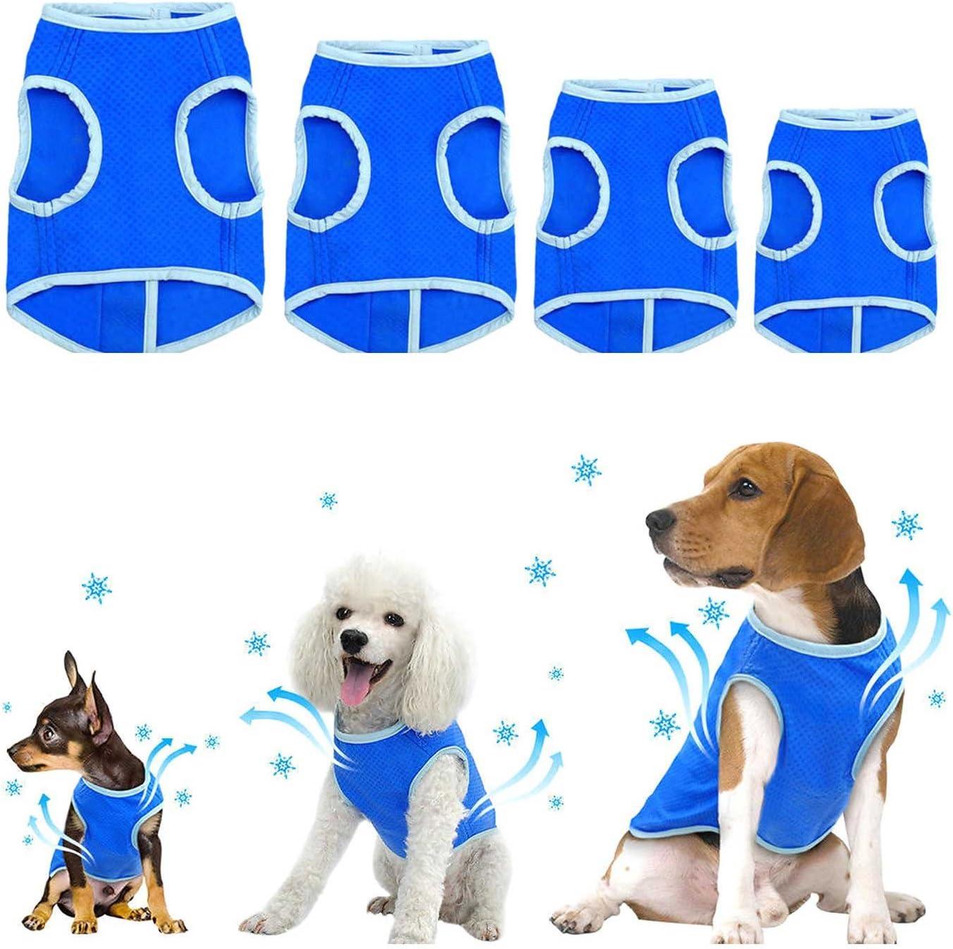 Transpirable Senderismo medianos y Grandes anticalor Chaqueta fr/ía de Verano Zunea Chaleco de refrigeraci/ón para Perros peque/ños Entrenamiento Azul XS para Deportes al Aire Libre Suave