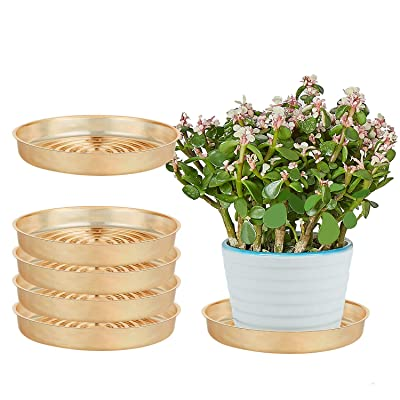 """OAKBAY 5 Pieces of 6 Inch Christmas Decorative Gold Plastic Plant Saucer Drip Tray for Pots (6"""") : Garden & Outdoor"""