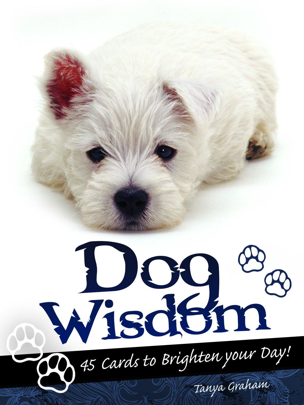 Download Dog Wisdom Cards pdf