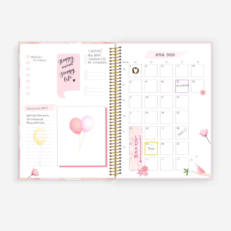 Life Planner - Agenda planificadora (A5), color rosa: Amazon ...
