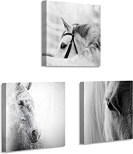 Horses Picture Animals Artwork Prints: Vintage Portrait Graphic Wall Art on Canvas