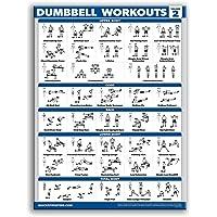 AniYY Bodybuilding Gym Sport Fitness Halter Poster Kettlebell Workout Oefening Training Grafiek Kunst Muur Poster Print…