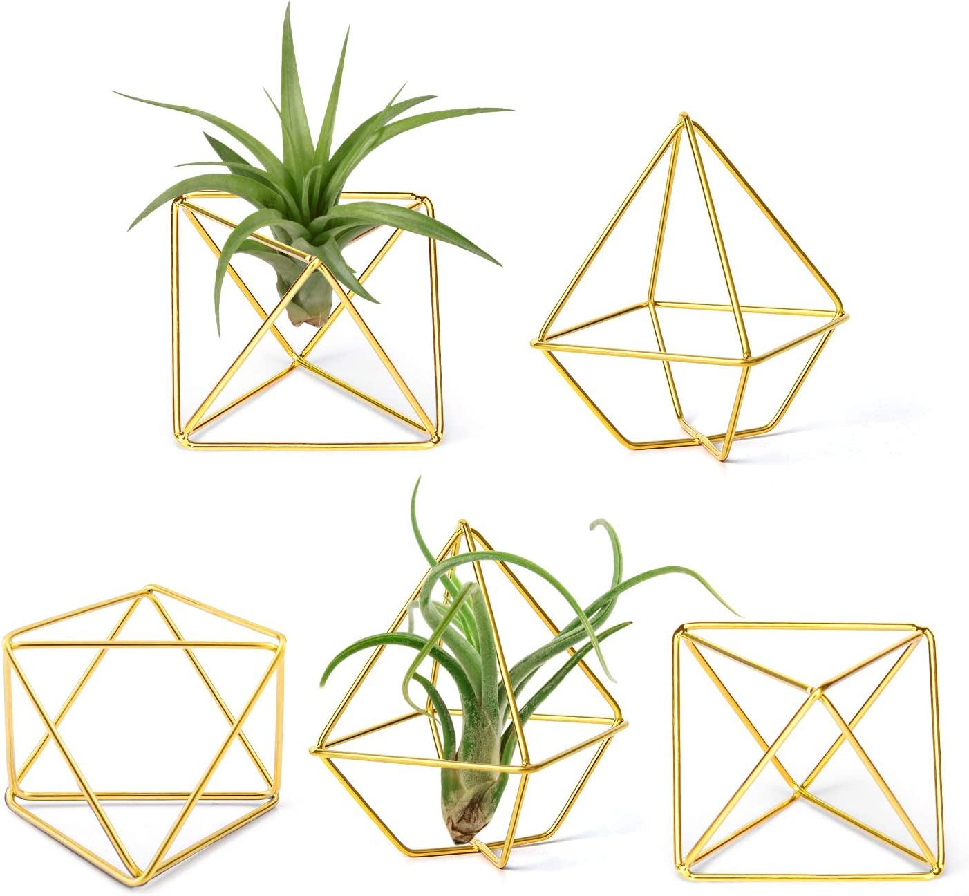 Mkono 5 Pack Air Plant Holder Metal Himmeli Decor in 2 Shapes Mini Desk Air Fern Display Stand Hanging Airplants Rack Modern Geometric Planter Tillandsia Hanger for Home Office Wedding Gift Idea, Gold