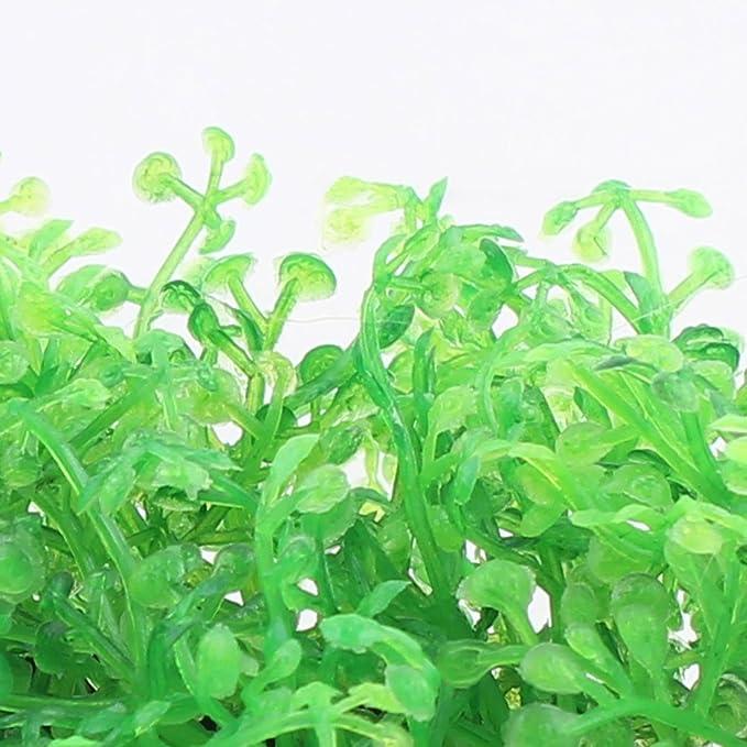 Amazon.com : eDealMax acuario de plástico rectángulo acuática Planta de césped de hierba Verde del ornamento de la decoración 4pcs : Pet Supplies