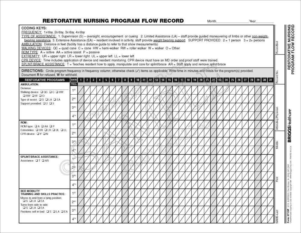 Briggs Healthcare Restorative Nursing Program Flow Record - 100 Per Pad