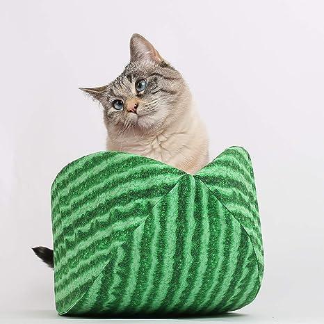 Amazon Com Cat Canoe Modern Cat Bed Watermelon Pet Supplies