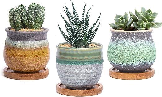 Cactus Plante Planteur Cache Pot Jardini/ère Contenant D/écoration de Maison Bureau Cadeau pour Anniversaire T4U Pot de Succulent avec Plateau en Bambou Blanc C/éramique Fleur Dessin Lot de 6