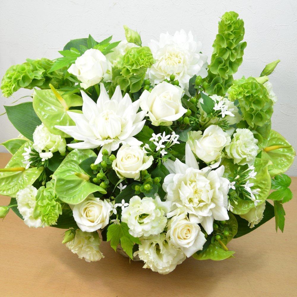 [エルフルール]【立て札可】フラワーギフト カラーが選べる 店長おまかせお祝い花 移転祝い 開業祝い 開店祝い 開院祝い (ホワイトグリーン系) B01GMZ9WE6 ホワイトグリーン系 ホワイトグリーン系