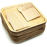 Shrayati Perfect Disposable Party Plates-,Palm Leaf Plates ,(V001, Natural , 10 Inch X 10 Inch) Pack Of 20 Plates