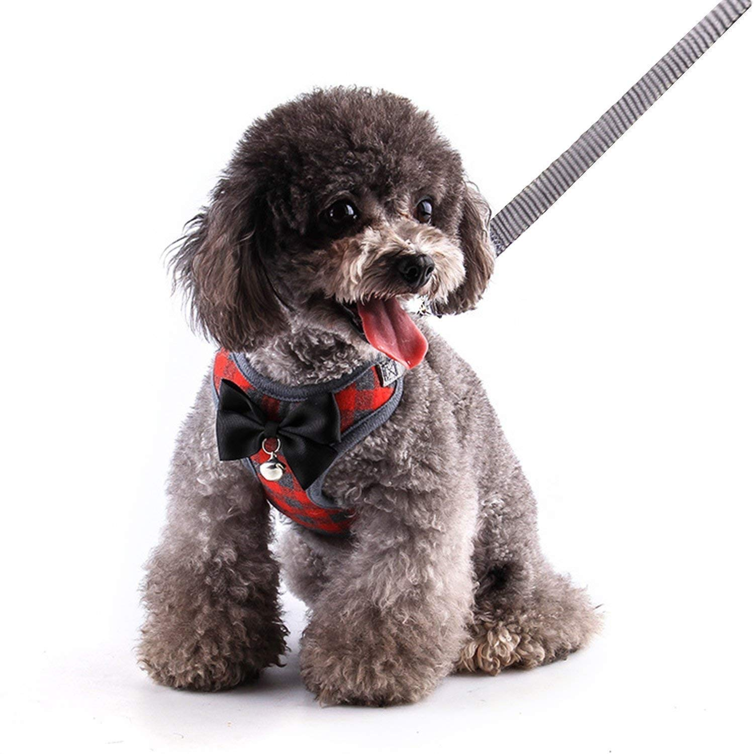RYPET Small Dog Harness and Leash Set - No Pull Pet Harness with Soft Mesh Nylon Vest for Small Dogs and Cats Red M by RYPET (Image #7)