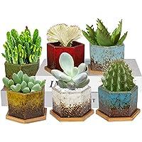 Succulent Pots - Laerjin 3.74 Inch Ice Crack Ceramic Succulent Planters with Drainage, Set of 6 Colorful Ceramic…