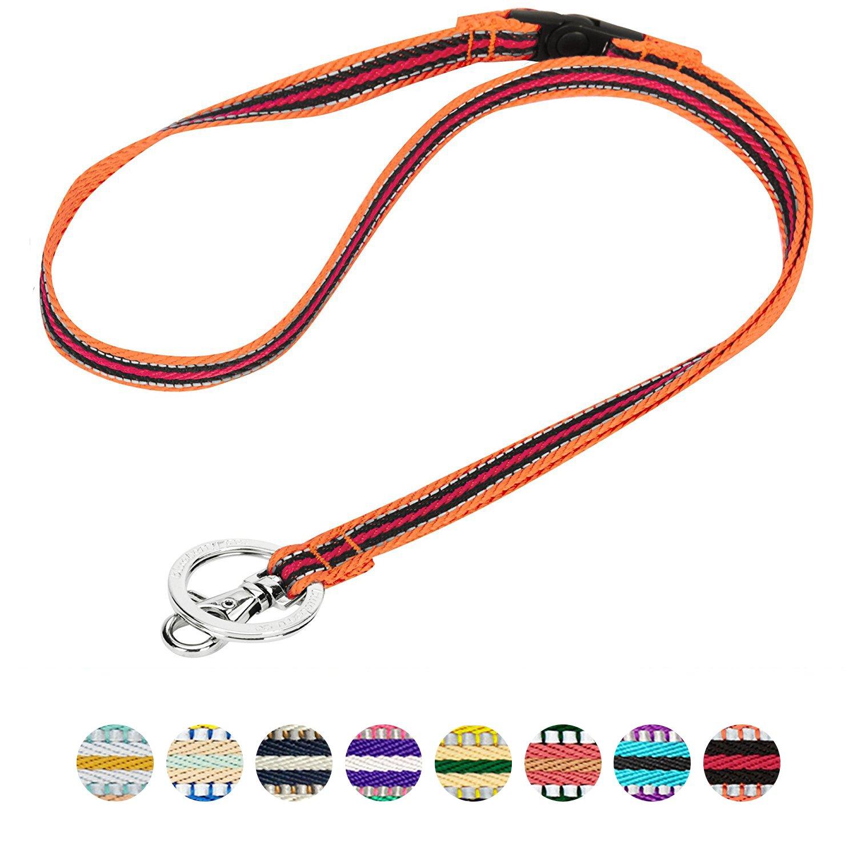 Blueberry Pet 3M Reflektierendes Bunt-Gestreiftes Hundehalsband