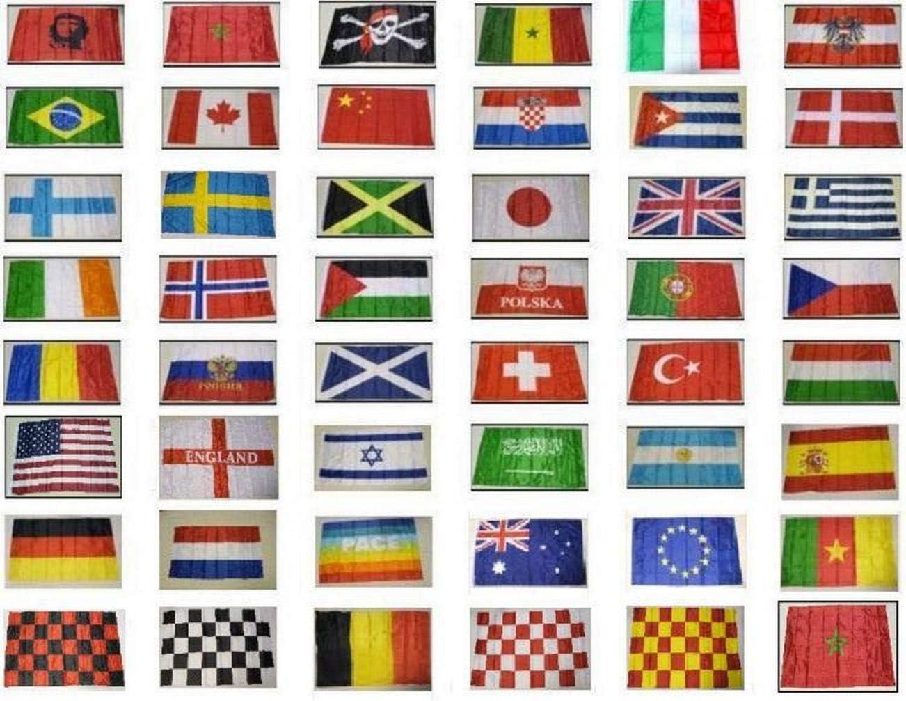 R&F srls 100 Banderas Bandera de colección Hoteles Plantas Diferentes Estados Nacionales: Amazon.es: Jardín
