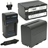 Wasabi Power Battery (2-Pack) and Charger for Sony NP-F975, NP-F970, NP-F960, NP-F950