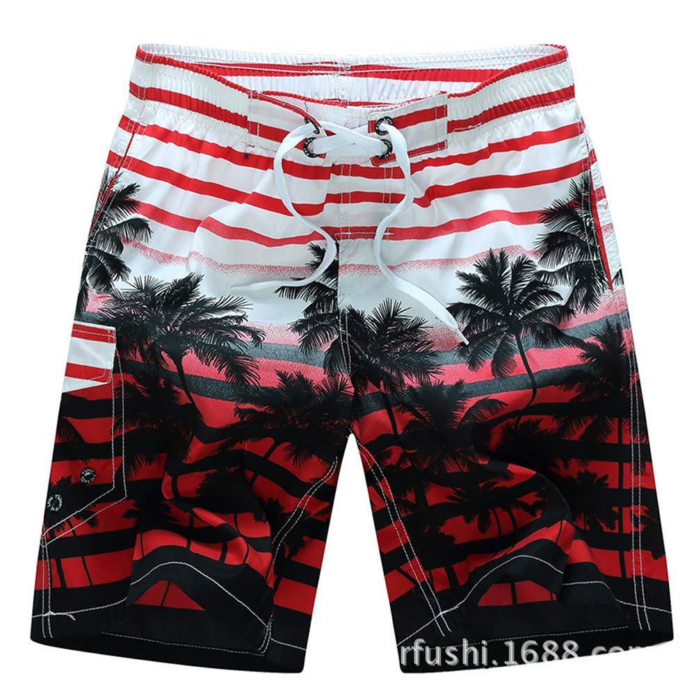 IDEALSANXUN Men/'s Quick Dry Printed Beach Shorts with Elastic Waist