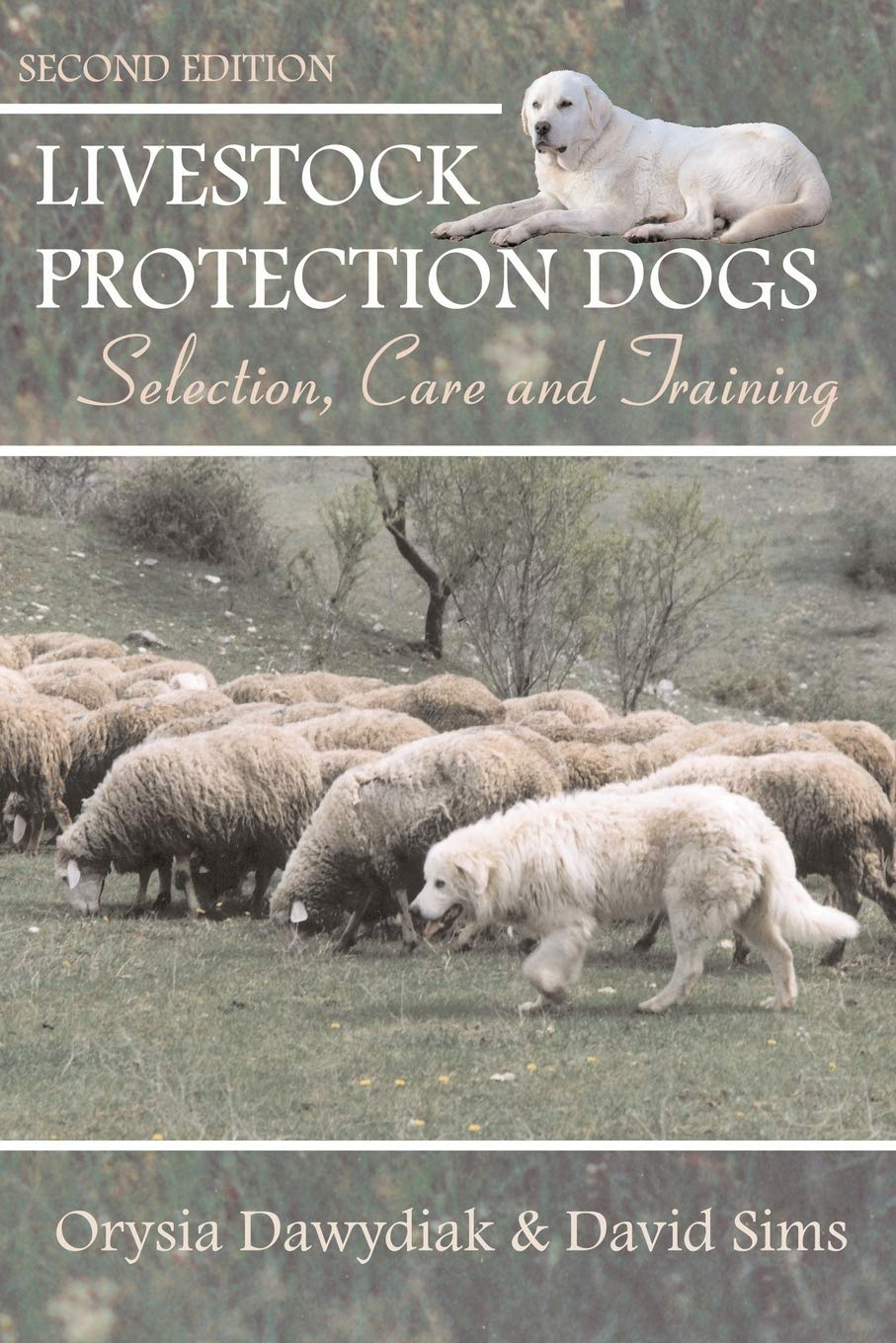 Livestock Protection Dogs: Selection, Care and Training