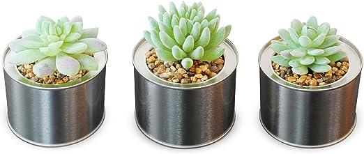 Juego de 3/Artificial verde Cactus suculentas plantas Metal lata maceta decoraci/ón del hogar