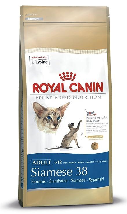 Royal Canin Comida para gatos Siamese 400 Gr: Amazon.es ...