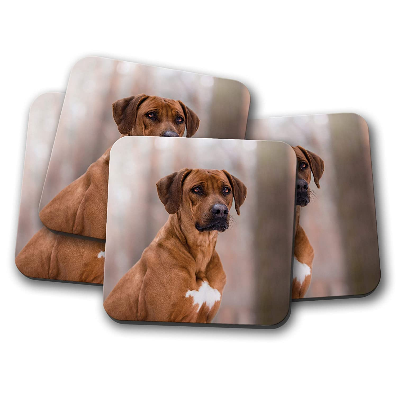 Lot de 4 dessous-de-verre pour chien Motif chien Rhodesian Ridgeback