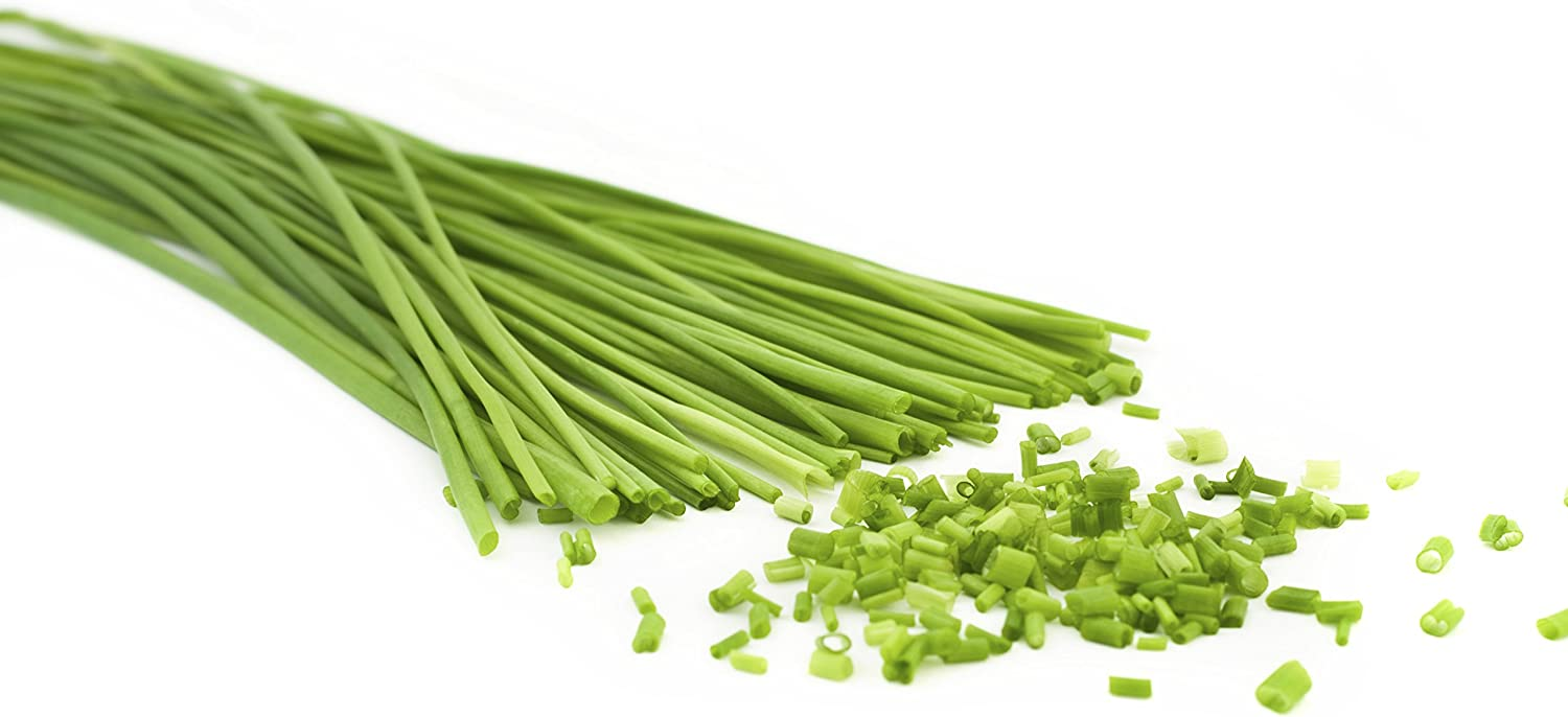 Some Known Details About Chives With Flowers