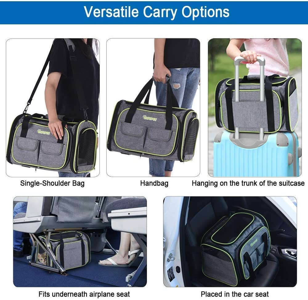 DADYPET Airline Approved Pet Carrier Soft-Sided Expandable Collapsible Portable Travel Carrier with Wool Rugs for Puppy Dogs Cats