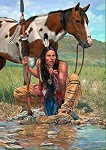 DIY 5D Diamond Painting by Number Kits, Diymood Painting Creek Horse Indian Paint with Diamonds Arts Full Drill Canvas Picture for Home Wall Decor 40x50cm(16x20inch)