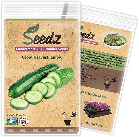 Hybrid NON GMO Cucumber Ajax F1 Vegetable Seeds
