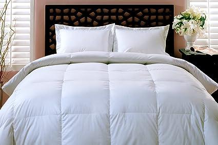 Amazon Com Blue Ridge Home Fashions King Down Comforter Home Kitchen