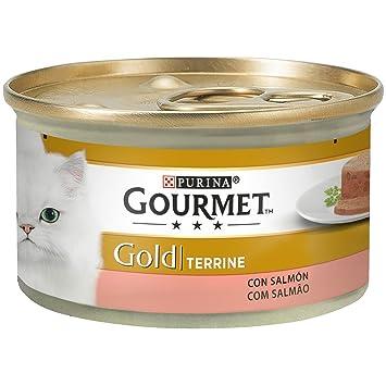 Purina Gourmet Gold Tarrine Comida para Gatos con Salmón 24 x 85 g: Amazon.es: Productos para mascotas