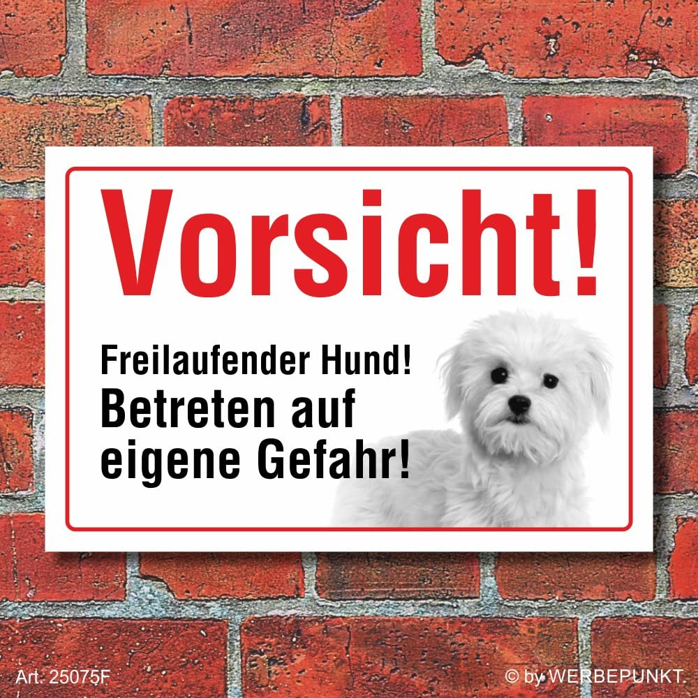 3 mm Alu-Verbund Motiv 1 300 x 200 mm Hund Schild Malteser Vorsicht Freilaufend Hinweis