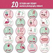 Baby Monthly Stickers – (Set of 20) Baby Milestone Stickers for Girls, Baby Girl Gifts on Every Baby Registry with All 12 Month Stickers, Perfect Baby Shower Gift by BebeTales