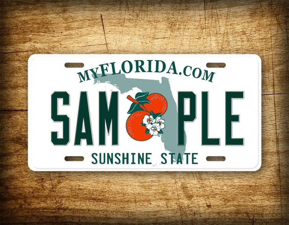 Fhdang Decor CUSTOM FLORIDA License Plate Any Text Customized Personalized Auto Tag Sign 6x12 Sunshine State