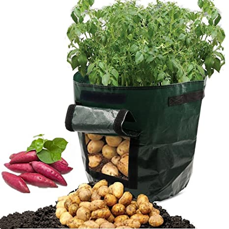 Amazon Com Asoon 2 Pack 7 Gallon Garden Potato Grow Bag Vegetables