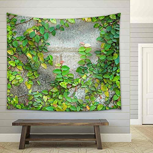wall26 – The Green Creeper Plant on a Wall – Fabric Wall Tapestry Home Decor – 68×80 inches