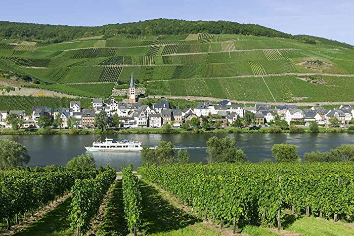 Lady Zell (Mosel)