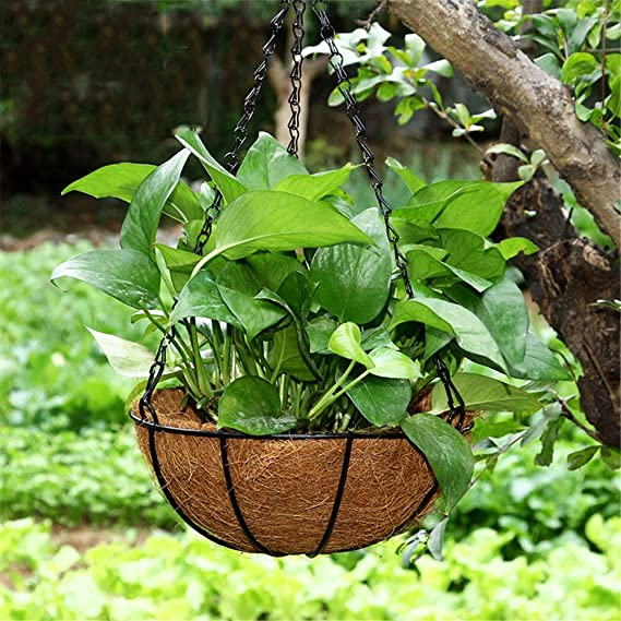 Subobo - Cesta Colgante para Maceta de jardín, 2 Unidades, diseño de Palmera de Coco, 2 Picture Color, M-S-12 x 25cm: Amazon.es: Hogar