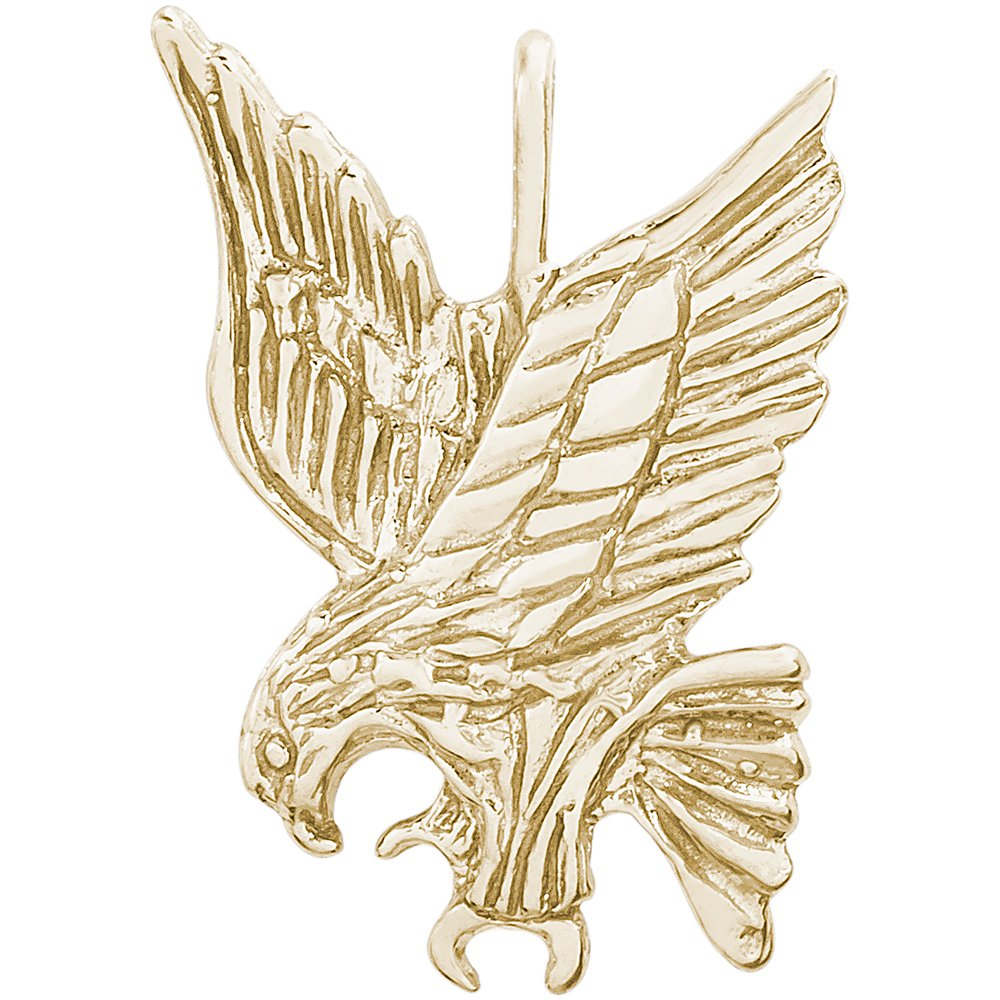 Rembrandt Sterling Silver Two-Tone Eagle Charm on a Sterling Silver Rope Chain Necklace