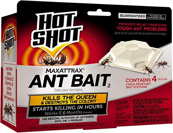 Amazon Com Hot Shot Hg 2040w Ant Bait Home Pest Lures Garden Outdoor