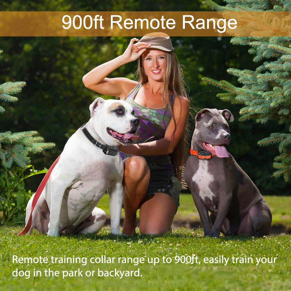 Fettish Dog Training Collar Rechargeable & Waterproof Electric Remote Dog Shock Collar with LED Light Beep Vibration Safety Shock Modes for Small/Medium/Large Training Collars by Fettish (Image #2)
