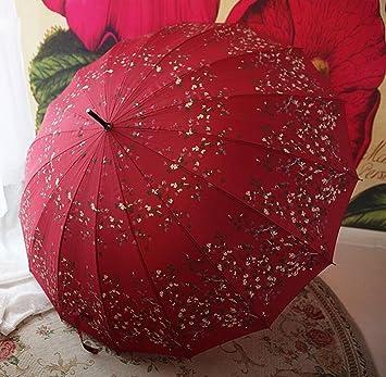 BBSLT Aluminio limpiar paraguas vintage en verano, largo paraguas a prueba de viento 16 hueso