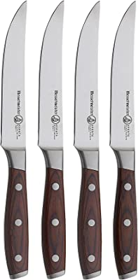 Best Steak Knives America's Test Kitchen