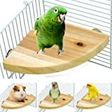 Borangs Wood Perch Bird Platform Parrot Stand Playground Cage Accessories for Small Anminals Rat Hamster Gerbil Rat Mouse Lov