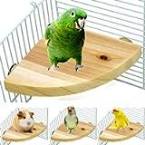 Birdcages & Accessories
